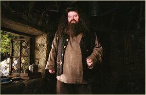 ハリー・ポッターと秘密の部屋12