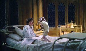 ハリー・ポッターと秘密の部屋9