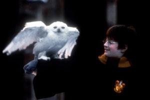 ハリー・ポッターと賢者の石8
