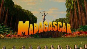 マダガスカル15