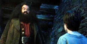 ハリー・ポッターとアズカバンの囚人17